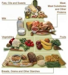 Makanan Yang Dapat Menurunkan Berat Badan Boga Dunia Saya