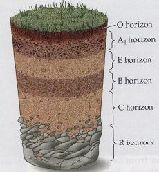 klasifikasi unsur tanah