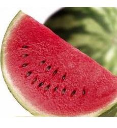 manfaat biji semangka kumpulan tips