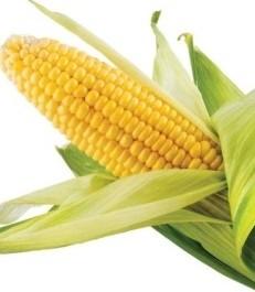 Kandungan jagung